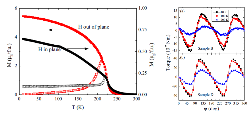 Strain-induced perpendicular magnetic anisotropy