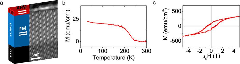 Anisotropic magnetoresistance in antiferromagnetic metallic IrMn